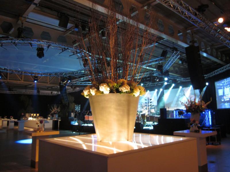 licht plant Liquidx